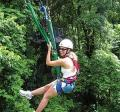 Daintree Jungle Surfing - a flying fox excursion on the rainforest canopy: 1.5 hours drive north of Port Douglas (#144)